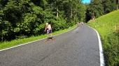 Skate the Ring 14.08.16_27